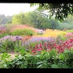 Garden by Piet Oudolf, Dutch Landscape Architect thumbnail