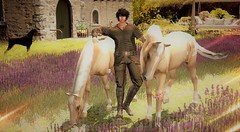 In The Country (Varosh Santanamiguel) Tags: nevertotallydead fearl provence gacha rare gaeg signature men medieval gor gorean country horses hors riding lavendel dog doberman swing tmcreation thechapterfour event exclusive boots outfit mesh bento simdesign areiyon vsm
