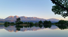 Summer Sunrise (Patricia Henschen) Tags: sunrise morning mountains collegiatepeaks sawatch range reflection trees frantzlake swa statewildlifearea salida colorado mtprinceton mt antero 14ers alpenglow princeton upperarkansasvalley lake chalkcliffs summer