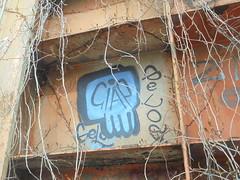 1474 (en-ri) Tags: giap gelo crew gelos azzurro nero teschio skull torino wall muro graffiti writing parco dora