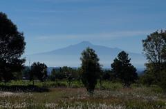 Malinche Volcano / Вулкан Малинче (Vladimir Zhdanov) Tags: travel mexico puebla landscape sky mountain volcano tree field grass malinche