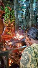 Madurai temple - Devotion (davidthegray) Tags: faith meenakshi tamilnadu southindia hindu temple india meenakshiamman meenakshisundareswarar southernindia दक्षिणभारत भारत मीनाक्षी தமிழ்நாடு தென்இந்தியா மீனாட்சி ದಕ್ಷಿಣಭಾರತ madurai in sculpture statue pilgrims women