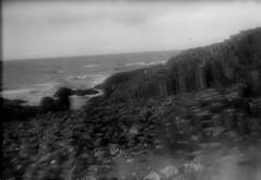 Giant's Causeway 2017- 008 (irishlad031_vintage) Tags: giantscauseway irishlad031vintage irishlad031 irish ireland film vintagephotography coantrim browniecamera boxbrownie blackwhite ulster ulsterisirish
