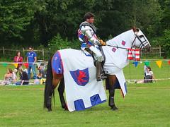 DSCF3841 (SierPinskiA) Tags: ruffordabbeycountrypark rufford knightsofnottingham fujixs1 jousting medieval horse knights goldeneagle falcon