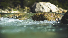 Water Flow (Nik2o) Tags: saintbenoitendiois auvergnerhônealpes france fr nikon nature sigma d7500 water green focus flow roche rock time drome shadow eau agua outdoor outdoors dynamique apsc bokeh river nik2o drome26