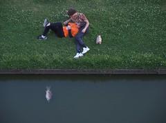 nantes_DSCN0788 (ghoermann) Tags: nantes paysdelaloire frankreich fra water fish dead