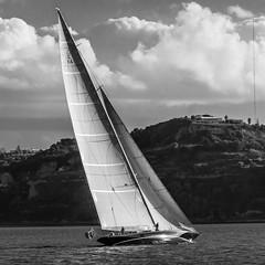 (Pedro Castro Palma Santos) Tags: lisboa lugares veleiro portugal pt