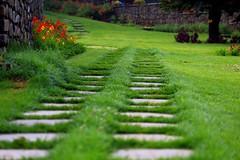 path way (Rajavelu1) Tags: landscapephotography grass lawn green flower red yellow outdoorphotography pathway stonewall dslr art creative artdigital