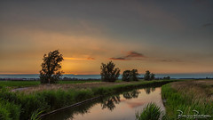 After Sunset Colors (BraCom (Bram)) Tags: 169 bracom bramvanbroekhoven dirksland goereeoverflakkee holland nederland netherlands southholland zuidholland avond boerderij boom cloud ditch evening farm gras grass landschap polder reed reflection reflections riet sky sloot spiegeling summer sunset tree water widescreen wolk zomer zonsondergang