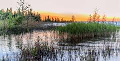 _DSC2002-Pano.jpg (David Hamments) Tags: summer2016 ontario sunset lakehuron portelgin macgregorpointprovincialpark fantasticnature ngc