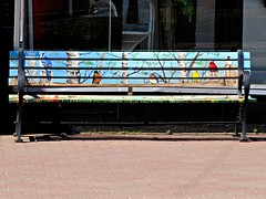 Local Artist beautifies the city (clickclique) Tags: bench painting birds colorful colourful street summer painted inexplore 6000viewsunlimited