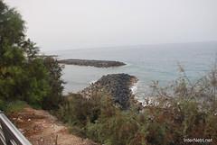 Playa de las Américas, Тенеріфе, Канарські острови  InterNetri  789