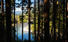 Always Searching (John Westrock) Tags: nature trees river mountains light hiking pacificnorthwest washingtonstate canoneos5dmarkiii canonef1635mmf4lis yextwashington