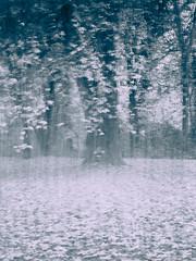 20151107-_1040947-G615-Tobias-Jeschke-www-fotoist-de (tobias jeschke fotoist.de) Tags: blätter bäume halle herbst jungfernwiese landschaftsbilder langzeitbelichtung verwaschen