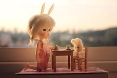 Would you like more tea, Mr. Bunny? 🐰 (Petitedoll) Tags: bunny bjd doll mong secretdoll