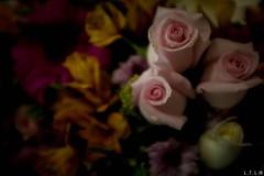Happy birthday mom! -1 (LTL78) Tags: mexico fujifilm x100t flowers flower mom birthday cumpleaños