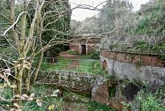 Etruscan Tombs, Banditaccia Necropolis, Cerveteri, Italy (Andy Montgomery) Tags: cerveteri etruscan tomb
