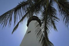lighthouse (kaceyfoss) Tags: summer florida beach lighthouse palm tree sunny sky blue