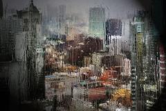 Rain (Zz manipulation) Tags: art ambrosioni zzmanipulation rosso campo fiore natura rain city pioggia inverno