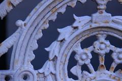 Salted caramel (harrypembo99) Tags: salt sea fence rust metal sydney australia manly