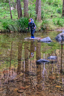 Green Gully Track: one of our last crossings