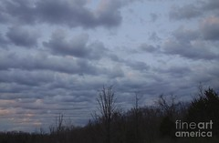 Lines of clouds (Aliceheartphoto) Tags: clouds cincinnatiphotography cincinnati ohio sky bluesky trees naturephotography nature rows sony cybershot weather weatherphotos blueclouds