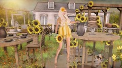 Sunflowers Are Forever (Duchess Flux) Tags: equal10 rewind ultra fameshed thechapterfour imagiarium osmia wasabi letis laq purepoison lepoppycock yourdreams ionic secondlife sl