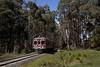 Musk (michaelgreenhill) Tags: daylesfordspacountryrailway victoria dscr railcar rm63 diesel spring 63rm sunny derm clouds musk australia au