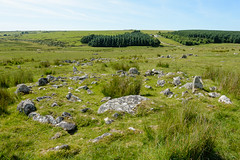 Hut Circle, Rough Tor (RoyReed) Tags: roughtor stone england unitedkingdom gb