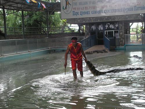 В пащу крокодилу Паттайя Таїланд Thailand InterNetri 28