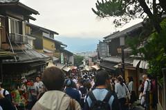 DSC_0043 (sxcxxhx) Tags: japan osaka kyoto hydrangea flower trip voyage 日本 大阪 京都 旅行