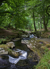 Ireland Countryside (Alice Jean Photography) Tags: stream river grass trees water natural landscapes nature beauty rocks light flowing sallygap wicklow ireland