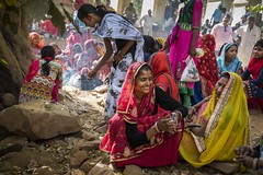 Parikrma Festival (charlesgyoung) Tags: parikrma charlesyoung karineaignerphotographyexpedition rajasthan ranthamborenationalpark india travelphotography nikon nikonphotography festival hindu