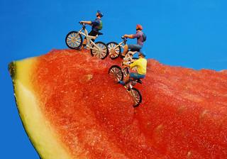"""Training für die """"Tour de France""""; Etappe am Melonen-Berg"""