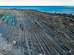 Euskadi - 15 (Mukis_trip) Tags: mar see landscape paisaje marea costa coast nature geologia estratos