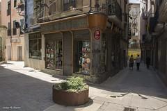 LA LLIBRERIA ROCA (Catalunya, juny de 2018) (perfectdayjosep) Tags: elbages llibreriarocademanresa bookstore llibreria manresacatalunya catalunya catalonia catalogne katalonien perfectdayjosep