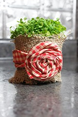 Gift Wrapping Ideas: Burlap and fabric flower cover plain plant pot (giftsmaps.com) Tags: gifts