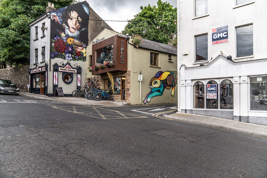 EXAMPLES OF STREET ART [URBAN CULTURE IN WATERFORD CITY]-142333