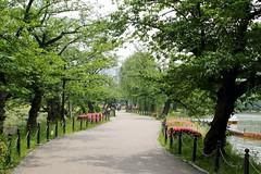 上野公園 Ueno Kōen (Brian Aslak) Tags: tokyo 東京 kanto 関東 japan 日本 nihon asia 上野公園 uenokōen 上野 ueno city urban park 不忍池 shinobazu pond path walkway