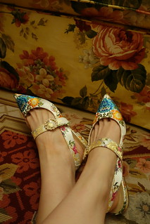 My new Marie Antoinette Shoes!