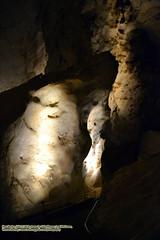062518-077 (leafworks) Tags: chroniclesofsiroisinleaf newmexico carlsbad carlsbadcavernsnationalpark caves caverns coloradosprings co usa 01