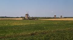 View from the train window, near Gouda (Elisa1880) Tags: molens molen mill windmill windmolen landschap landscape nederland netherlands gouda train trein window raam