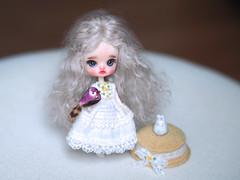 Little Dal - Custom Petite Mini Dal (.♥.sarsarblanki.♥.) Tags: embroidery sewing ooak customdoll doll custom custompullip pullip petitepullip minipullip littlepullip littledal dal sarsarblanki customdal