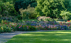 Rosengarten (KaAuenwasser83) Tags: rosengarten karlsruhe