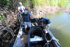 Collecting Fish Data