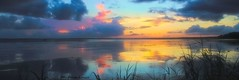 Roll away the dew. (Kathryn Louise18) Tags: canon kathrynlouise florida landscape seascape seashore nature volusiacounty stjohnsriver lakemonroe gratefuldeadlyrics roberthunterlyrics jerrygarcialyrics