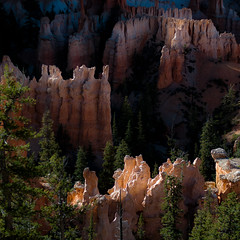 In Canyons 246 (noahbw) Tags: brycecanyon d5000 nikon utah abstract autumn canyon cliffs desert erosion hoodoos landscape light natural noahbw quiet rock square still stillness stone sunlight trees