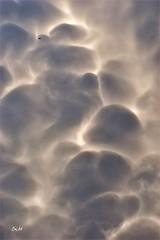 Mammatus épisode III (Emmanuelle Baudry - Em'Art) Tags: beauty beauté beautiful nuage cloud ciel sky mammatus gard occitanie languedocroussillon france nikon paysage landscape emmanuellebaudry emart groupenuagesetciel