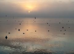 trasimeno_lago_02 (Marco Tuteri) Tags: lago trasimeno tramonto