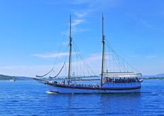 Trip (Leifskandsen) Tags: boat oslo visitoslo oslofjorden travel voyage passengers camera leica leifskandsen living landscape skandsenimages skandsen scandinavia norway harbour